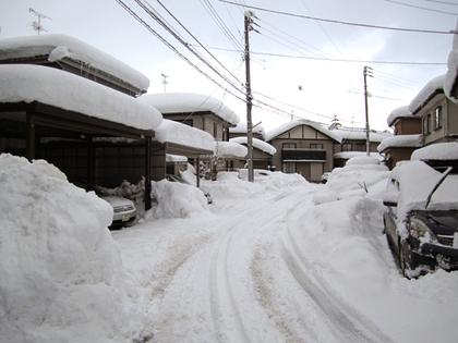 2012.2.12.三条大雪 002.jpg