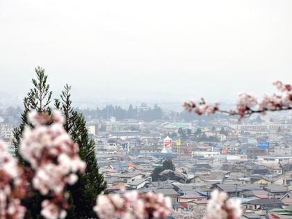 飯盛山より鶴ヶ城望む950.JPG
