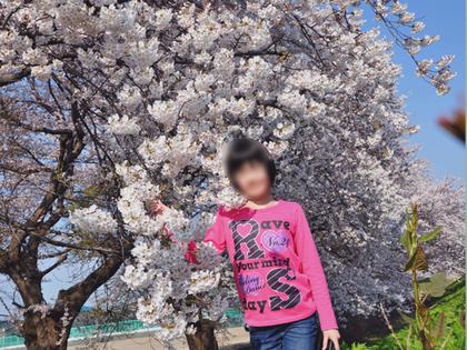 2014年4月桜82.JPG