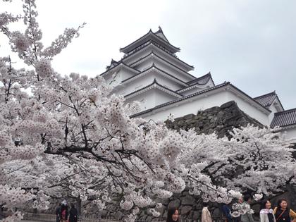 2014年4月21日.鶴ヶ城的桜64.JPG