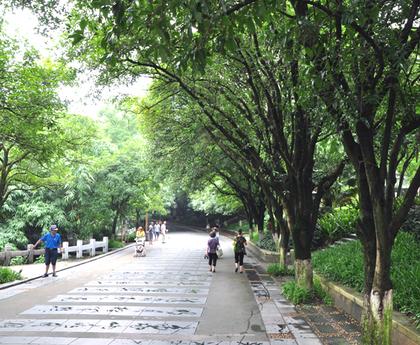 2014年6月的七星公園24.JPG