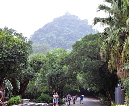 2014年6月的七星公園3.JPG
