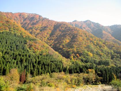 2015.10.19.三国県境紅葉.JPG