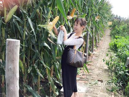 2016.年9月11日.農家菜.jpg