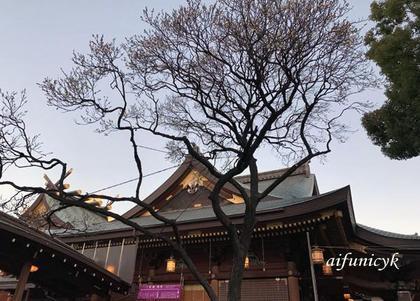 三島天神(白梅)大社.jpg