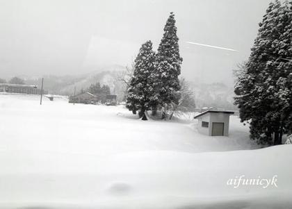 2019.1.16.越後湯沢.雪.jpg